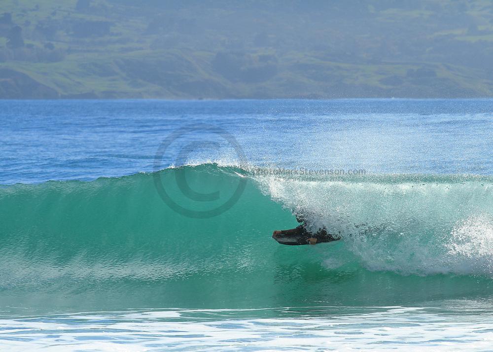 Surf break on the North Coast of Dunedin