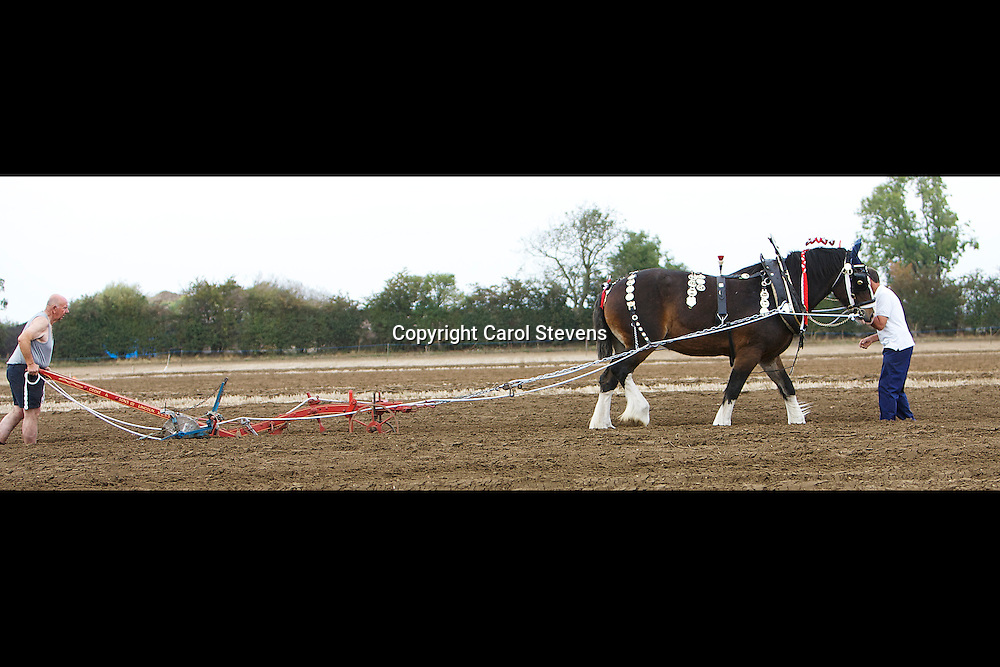 Northern Heavy Horse Society<br /> Annual Ploughing Match   North Cave, East Yorkshire<br /> Sunday 2 October 2011