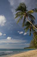 Alleynes Bay on the west coast of Barbados