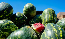 Watermelons for sale in Taliouine, a little mountain village in the south of Morocco<br /> <br /> (c) Andrew Wilson | Edinburgh Elite media