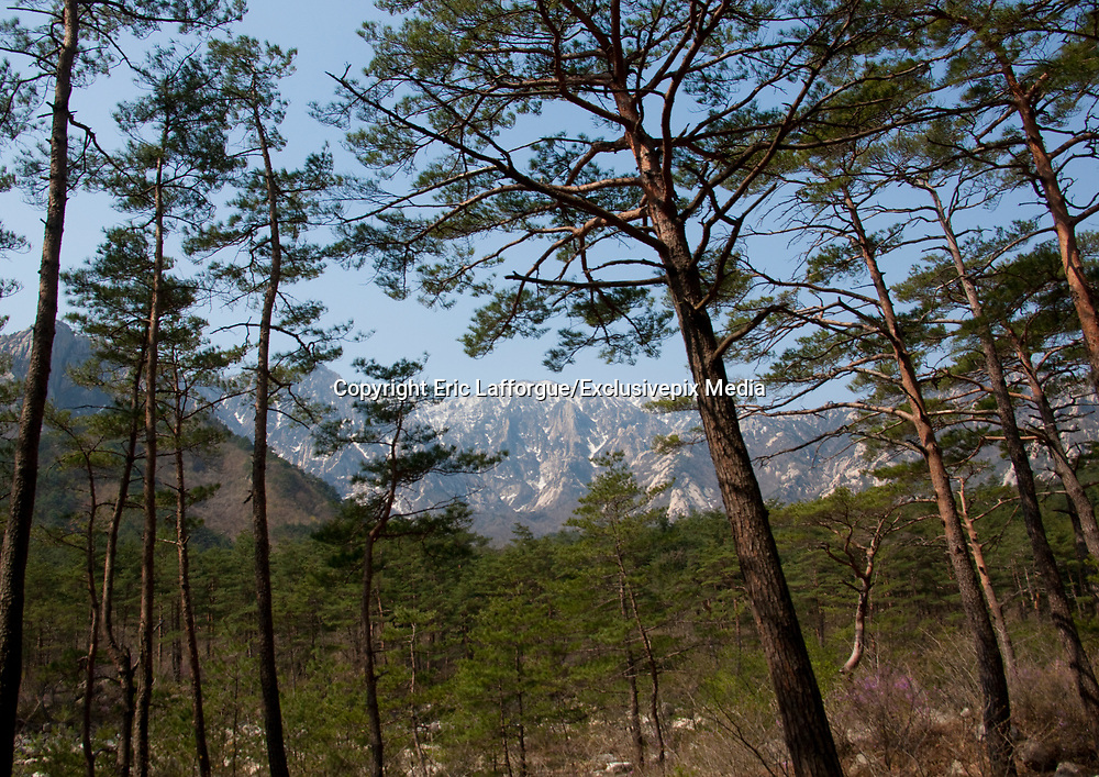"""KUMGANG<br /> THE NORTH KOREAN GHOST TOWN<br /> <br /> The first town USA will find on his way to invade NK will be this ghost town where HUnday lost 1 billion USD..<br /> <br /> The Mount Kumgang tourist complex in North Korea, near the DMZ, was built in 1998 by the South Korean giant company Hyundai. The chaebol paid a fee of $1 billion to the North Korean government for 50 years of exclusivity. The cost of the 500-square kilometer complex was $400 million, including hotels, a spa, a fire station, a tourism office, a golf course, a supermarket, a clinic, tours in the mountain... Kumgang resort attracted nearly 2 millions south korean tourists from1998 to 2008.<br /> In July 2008 a South Korean tourist, Miss Park Wang-ja, was shot dead there and South Korea decided to stop all the tours in North Korea. The North Korean government said the tourist entered the military zone, and ignored the warnings from the north korean soldiers.<br /> So in retaliation, North Korea decided to seize the whole tourist complex. This decision was a real drama. Not for the touristic industry only, but for the separated families from the south and the north: Kumgang was also the place where hundreds of North and South Korean relatives were meeting each other for the first time in decades.<br /> For those reasons, since 2008, Mount Kumgang complex has became a ghost town. Only very few western tourists could visit the area.<br /> <br /> Photo shows:   When my north korean guides spoke about Kumgang, their main interest was about treking in the sacred mountain around. They like to speak about the """"Diamond Mountains » which are part of the korean history.<br /> ©Eric Lafforgue/Exclusivepix Media"""
