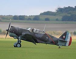 Curtiss Hawk, 75, 1940s, The Duxford Air Show, 14th September 2014