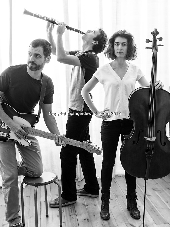 Brussels Belgium 11-11-2016 Portraits of Moon Cactus, a musical trio from Brussels, Belgium playing  a cross over jazz and improvisational classical music. Ma&iuml;t&eacute; Leuridan - cello<br /> Gonzalo Rodriguez Diaz - guitar<br /> Julien Delbrouck - clarinet