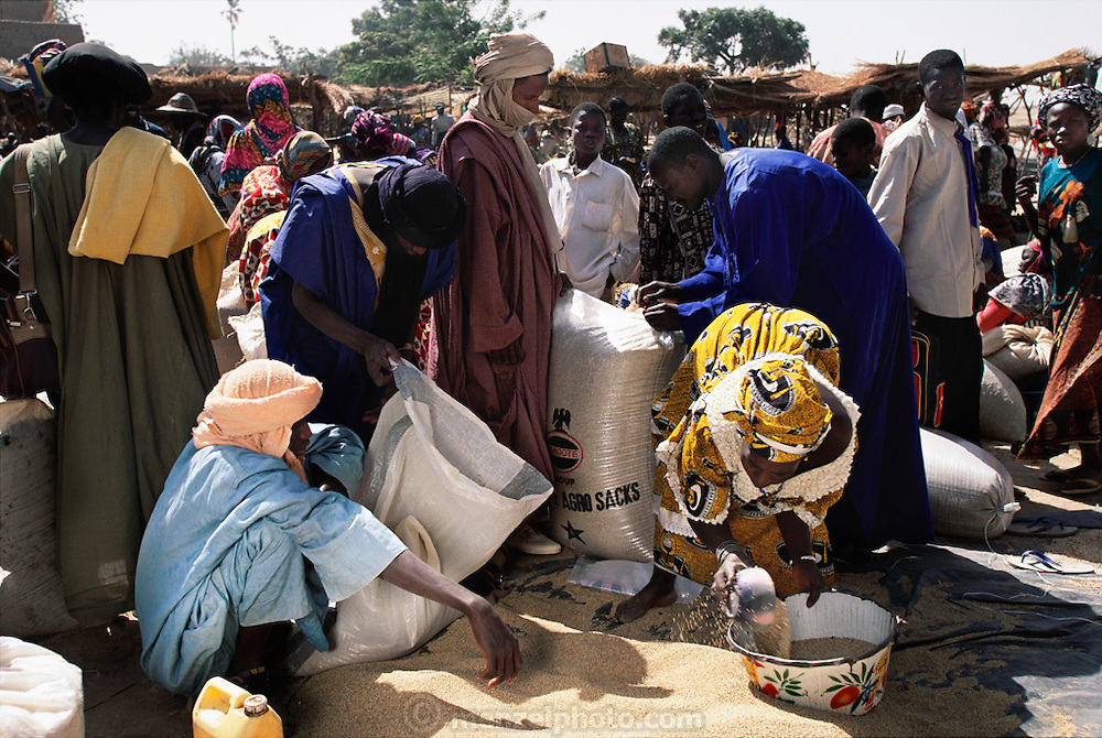 Market day in Koukourou, Mali. Africa. Grain trader Soumana Natomo (at right in blue) opens a sack of grain at the Saturday market in his village of Kouakourou, on the banks of the Niger River, between the market town of Mopti, and Djenne. One of his two wives, Pama Kondo (in yellow) measures rice for a customer. From coverage of revisit to Material World Project family in Mali, 2001.