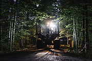 September 2017. Harvester and forwarder logging machines are heading work at dusk, when they'll be much harder to spot.  Photo: Krystian Maj