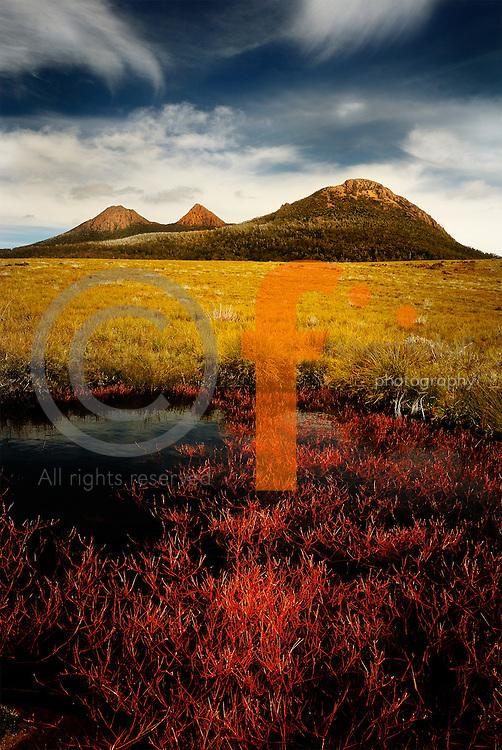 Richard Furhoff 90101_Tassie__DSC7817.tif.Red Pond Weed and Granite Hills, Lyell Highway, South West Tasmania..