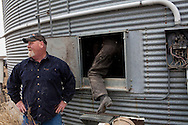 "Dwayne ""Bounce"" Allen empties corn from a bin into a truck on Wednesday, November 30, 2011 in Webster City, IA."