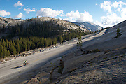Touring cyclist - Yosemite National Park Near East Entrance - Adventure Cycling Sierra Cascades Route - Canada to Mexico Cycling Expedition