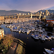 Canada, Vancouver, BC; Skyline With Granville Island And Small Craft Harbour On False Creek; Burrard Bridge & Coast Range Mountains In Distance with early morning walkers on path in foreground