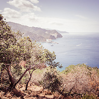 Catalina Island Avalon Bay retro vintage picture from above in the mountains. Catalina Island is a popular travel destination off the coast of Southern California in the United States.