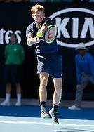 DAVID GOFFIN (BEL)<br /> <br /> Australian Open 2017 -  Melbourne  Park - Melbourne - Victoria - Australia  - 25/01/2017.