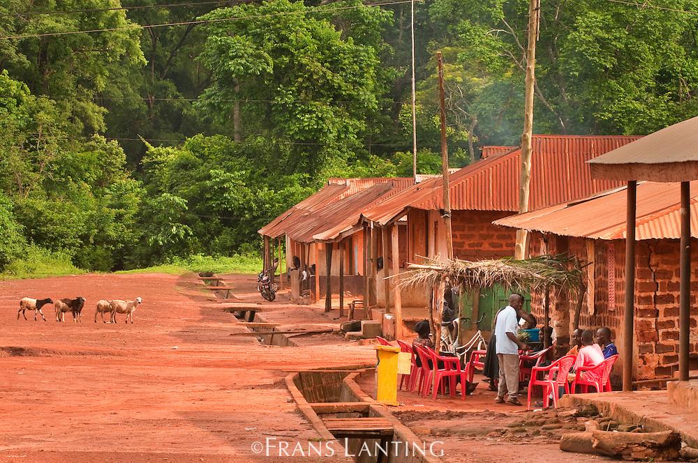 Boabeng-Fiema village, Ghana