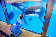 SeaWorld whale trainer