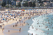 Crowds on Bondi Beach, Sydney, Australia.