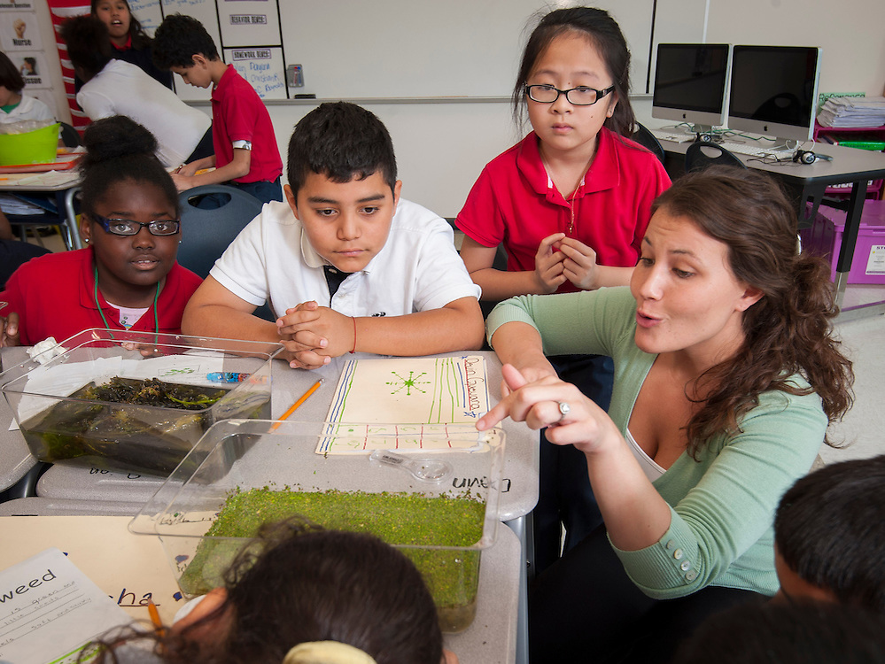 Paige Fernandez teaches her 4th grade class at Neff Elementary School, May 16, 2013.