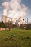 DEU, Germany, North Rhine-Westphalia, the brown coal power station Niederaussem near Bergheim, meadow in the district Auenheim. - <br /> <br /> DEU, Deutschland, Nordrhein-Westfalen, das Braunkohlekraftwerk Niederaussem bei Bergheim, Wiese im Stadtteil Auenheim.