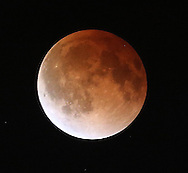 A full moon becomes a blood moon as Canada experiences a full lunar eclipse, early Tuesday, April 15, 2014. (TREVOR HAGAN/WINNIPEG FREE PRESS)