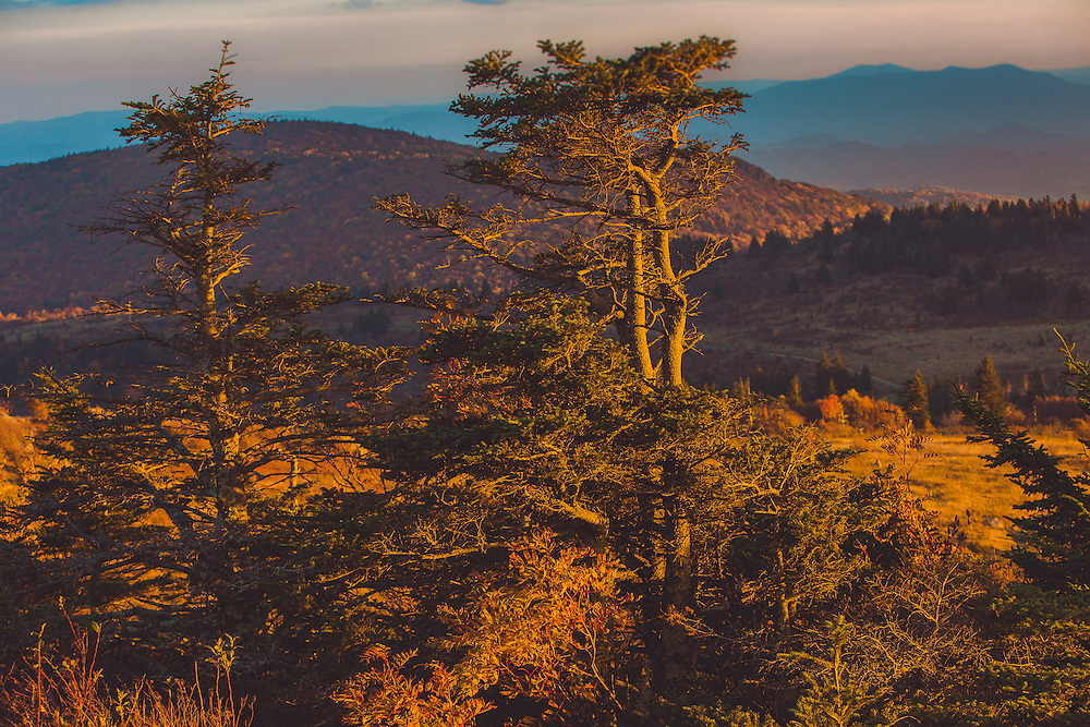 Grayson Highlands State Park