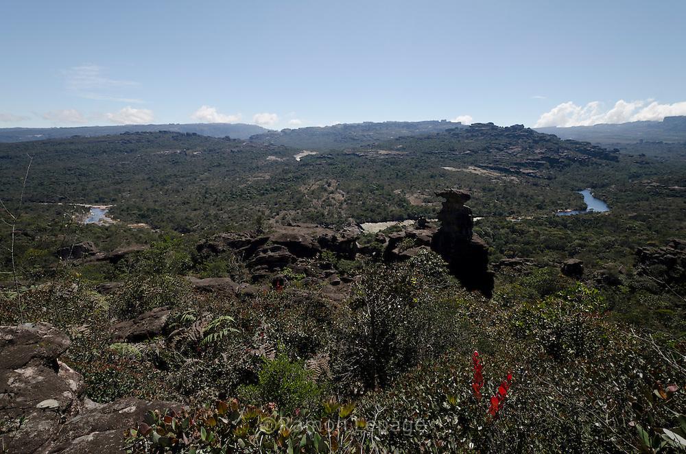 """AUYANTEPUY, VENEZUELA. Vista Panorámica del río Churum. El Auyantepuy es el mayor de los tepuis del Parque Nacional Canaima. En sus 700 kms2 alberga el salto angel o conocido por lengua indígena Pemon como """"Kerepacupai Vena; es la caída de agua más grande del mundo con sus 979 metros de altura. (Ramon lepage /Orinoquiaphoto/LatinContent/Getty Images)"""