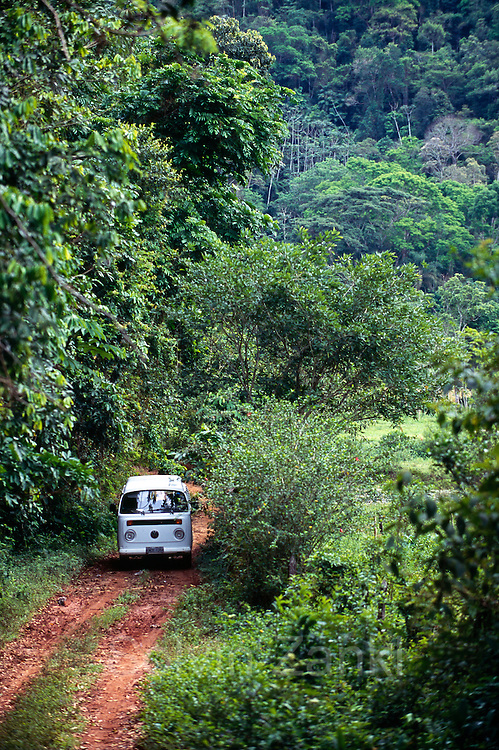 Members of the Associação Mico-Leão-Dourado drive by car into the Poço das Antas Reserve to conduct their work. | Mitarbeiter der ortsansässigen Associação Mico-Leão-Dourado fahren mit dem Auto in das Poço das Antas Reserve um dort ihre Arbeit durchzuführen.