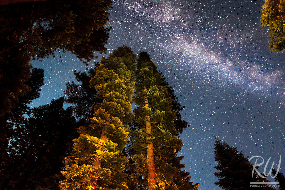Milky Way Galaxy, Calaveras Big Trees State Park, California<br />