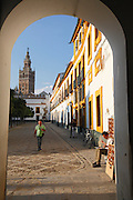 Man working on an oil painting in the Patio de Banderas with La Giralda and Seville Cathedral in the background, Seville, Andalucia, Spain.<br /> Photo: Zute Lightfoot