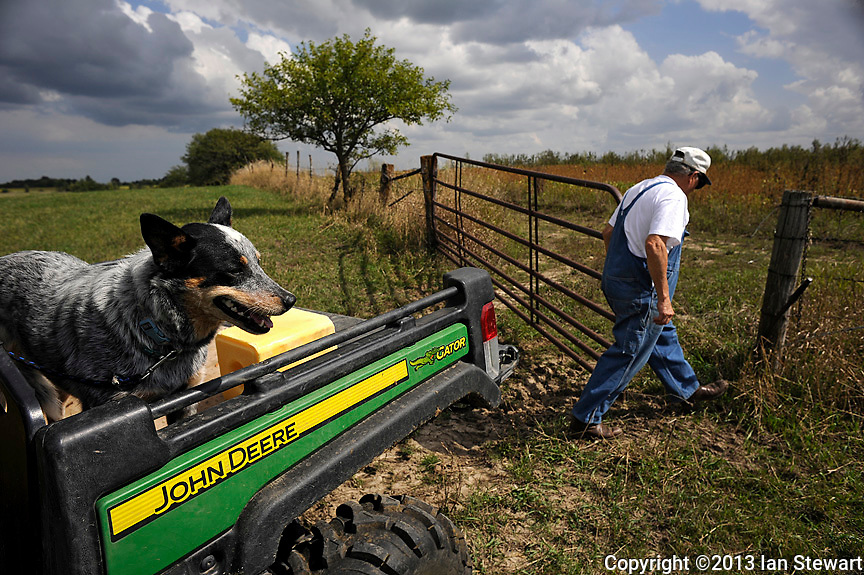 Caption 4<br /> Randell McCloud closes a gate to a back pasture while his dog Sally waits for him in a Gator.  He delivered salt licks to the cattle on September 24, 2013.