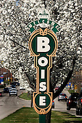 Welcome to Boise sign surounded by Spring blossoms