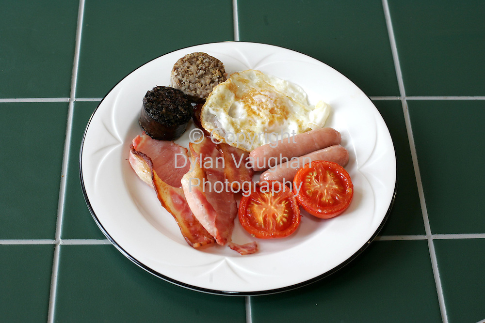 15/12/2004.E McSweeney food for Weekender.Week 87.Starter.Fry Up.Picture Dylan Vaughan