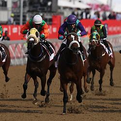 RACE 2 MUMM Stakes - 1400m POLYTRACK