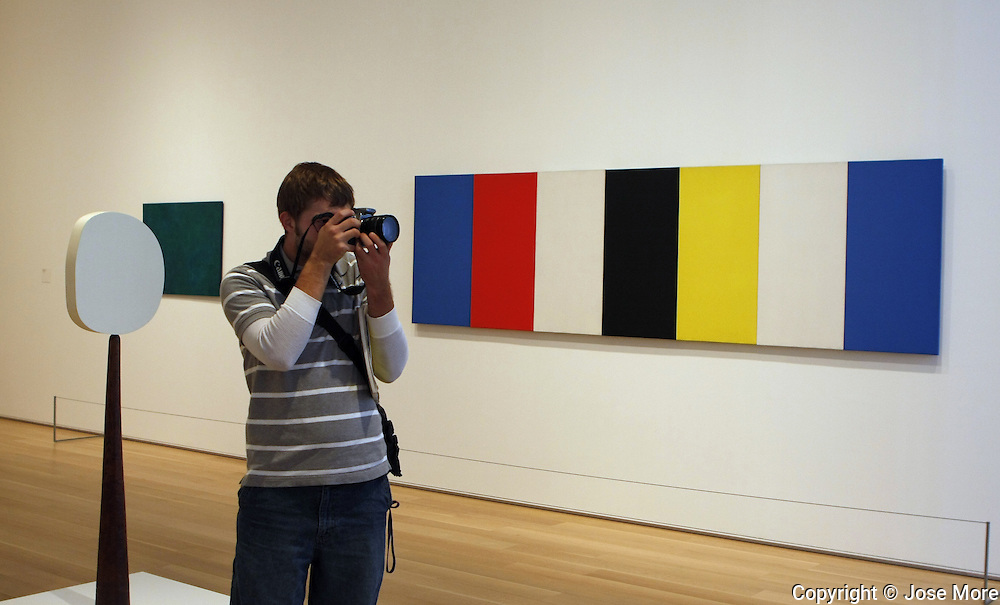 Chicago, Ill.: Jordan Kauffman from Goshen College, Indiana visits the Modern Wing of Art Institute. Behind Kauffman is a work by Ellsworth Kelly.  The Modern Wing attracts a younger crowd to the Renzo Piano designed building.   <br />