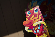 Signage of a dragon is highlighted in the sun during the Pomeroy Multicultural Festival at Pomeroy Elementary School in Milpitas, California, on April 25, 2015. (Stan Olszewski/SOSKIphoto)