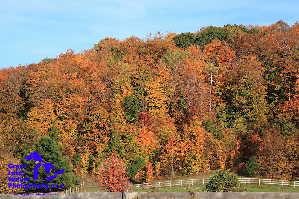 A beautifully colored hillside provides the backdrop for this Emmet County horse farm.