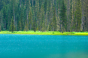 Turquiose waters of Lower Joffre Lake, Joffre Provincial Park British Columbia Canada