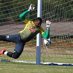 DURBAN, SOUTH AFRICA - Tuesday 9th June 2015 Action during The Bafana Bafana training session at  Moses Mabhida Stadium on Tuesday 9th June 2015,in Durban, South Africa<br /> Photo by Steve Haag
