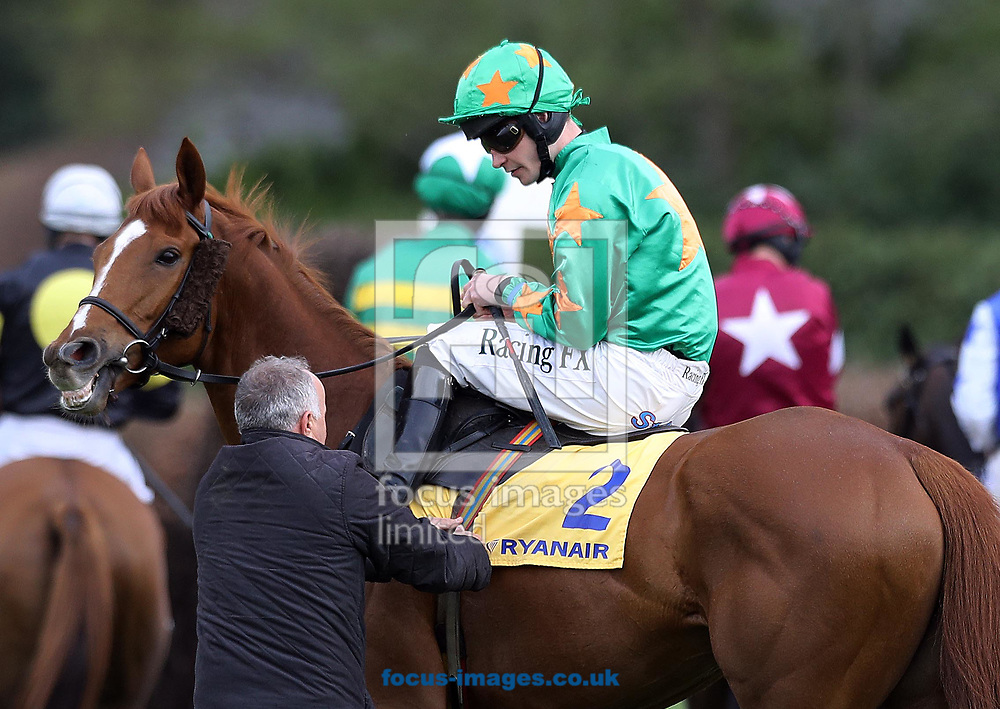David Mullins on Bailey Cloud has his girth adjusted before the Ryanair Novice 'chase on day three of the 2017 Festival at Punchestown Racecourse, Kildare, Eire.<br /> Picture by Kristian Kane/Focus Images Ltd +44 7814 482222<br /> 27/04/2017