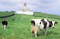 Faial island - Azores - Portugal