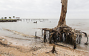 lakefront erosion along Lake Pontchartrain; Mandeville, Louisiana