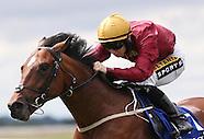 Curragh Racing 090815
