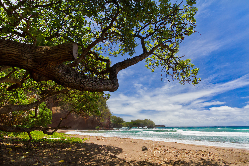 Looking through the trees at Hamoa Beach in Maui as the waves crash into the shore. <br />