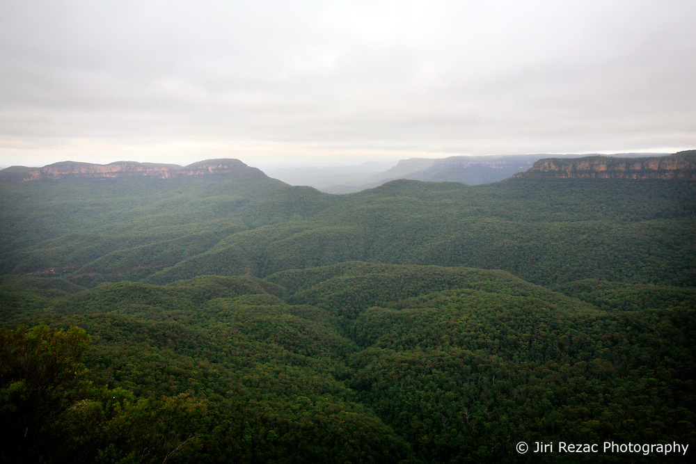 AUSTRALIA NEW SOUTH WALES 13FEB08 - Valley with rainforest near the Three Sisters rock formation, a famous landmark in the Blue Mountains, New South Wales, Australia...jre/Photo by Jiri Rezac..© Jiri Rezac 2008..Contact: +44 (0) 7050 110 417.Mobile:  +44 (0) 7801 337 683.Office:  +44 (0) 20 8968 9635..Email:   jiri@jirirezac.com.Web:    www.jirirezac.com..© All images Jiri Rezac 2007 - All rights reserved.