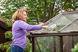 Washing dirty greenhouse glass with a hand brush