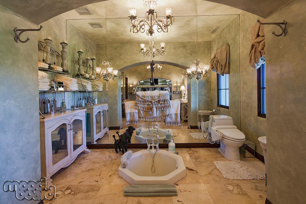 Modern bathroom interior design in mansion