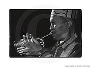 Berlin, DEU, 19.09.1994: Don Cherry mit Pocket-Trumpet, bei einem Konzert im Quasimodo Jazzclub Berlin, (Film 1269 Bild 03), SCHILKE_1994091912690300  [ Photo-copyright: Detlev Schilke, Postfach 350802, 10217 Berlin, Germany, Mobile: +49 (0)170 3110119, www.detschilke.de - Jegliche Nutzung nur gegen Honorar nach MFM, Urhebernachweis nach Par. 13 UrhG und Belegexemplare. Only editorial use, advertising after agreement! Eventuell notwendige Einholung von Rechten Dritter wird nicht zugesichert, falls nicht anders vermerkt. AGB/TERMS: http://www.detschilke.de/terms.html ]