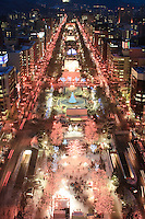 Odori Park in the centre of Sapporo is illuminated by the annual Snow Festival, one of the country's most famous festivals