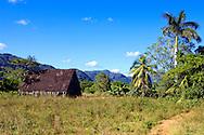 Barn in the San Carlos area, Pinar de Rio, Cuba.