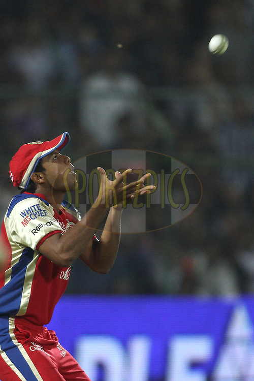 Mayank Agarwal of the Royal Challengers Bangalore takes a catch to dismiss Rajasthan Royals captain Rahul Dravid during match 30 of the the Indian Premier League (IPL) 2012  between The Rajasthan Royals and the Royal Challengers Bangalore held at the Sawai Mansingh Stadium in Jaipur on the 23rd April 2012..Photo by Shaun Roy/IPL/SPORTZPICS