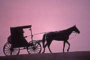 Horse and Buggy silhouette, Holmes Co. Ohio
