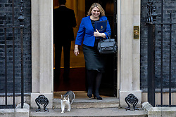 © Licensed to London News Pictures. 26/02/2019. London, UK. Secretary of State for Northern Ireland Karen Bradley and Larry, the Downing Street cat, leave 10 Downing Street. Photo credit: Rob Pinney/LNP