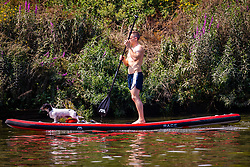 A man and his dog enjoy a paddle on the cool waters of the River Thames at Richmond as temperatures soar past the mid-30s in London. London, July 25 2019.